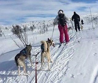 ski_sleding_9